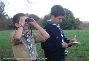L'Observatoire des oiseaux - 1ère Betton
